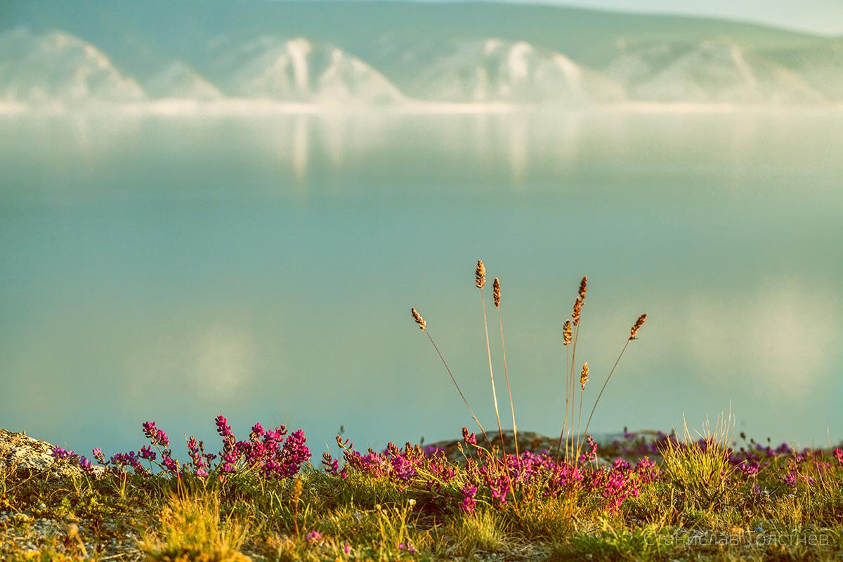 Учрежден некоммерческий Фонд поддержки прикладных экологических разработок и исследований «Озеро Байкал»