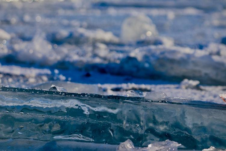 Ученые ЛИН СО РАН рассказали про санитарно-микробиологическое состояние акватории Малого Моря