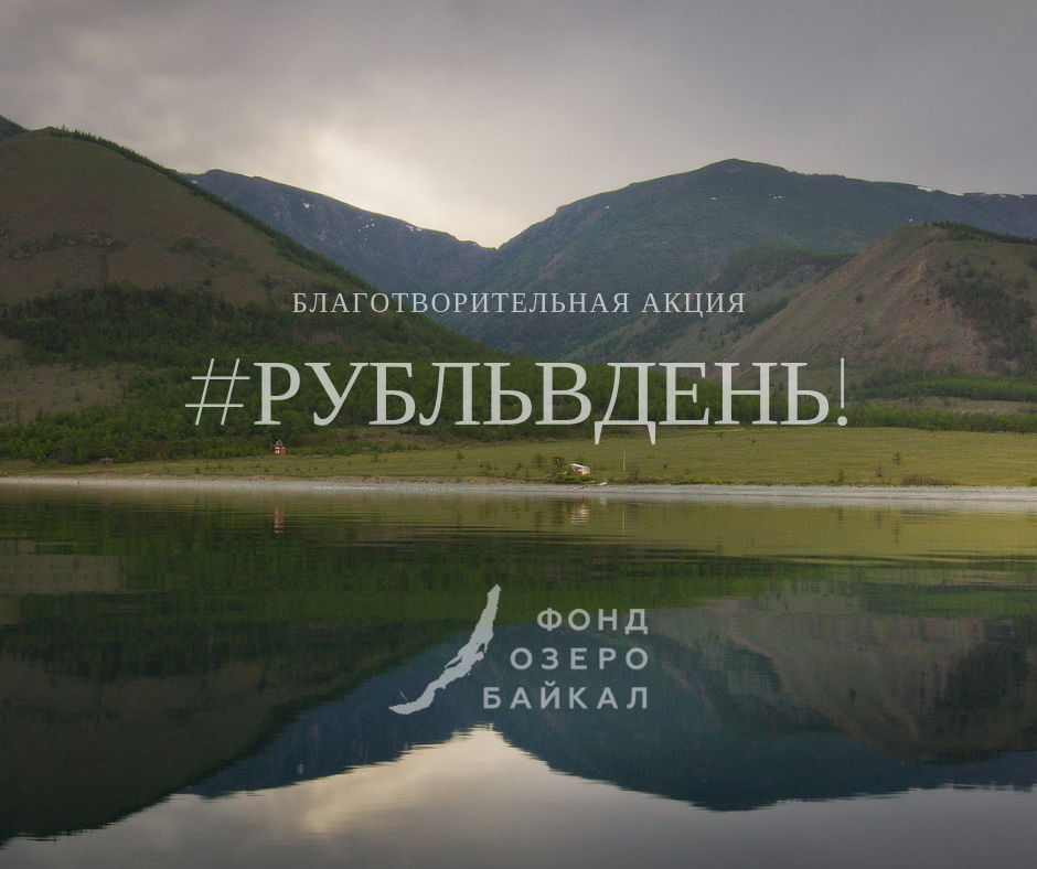 One ruble a day for the Lake Baikal Foundation: what does it mean?