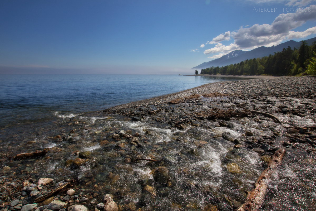 Lake Baikal Foundation transferred grants to the young scientists