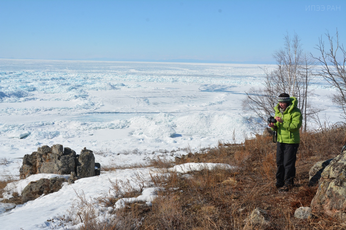 The Baikal sees the first expedition on the Baikal seal's satellite tagging