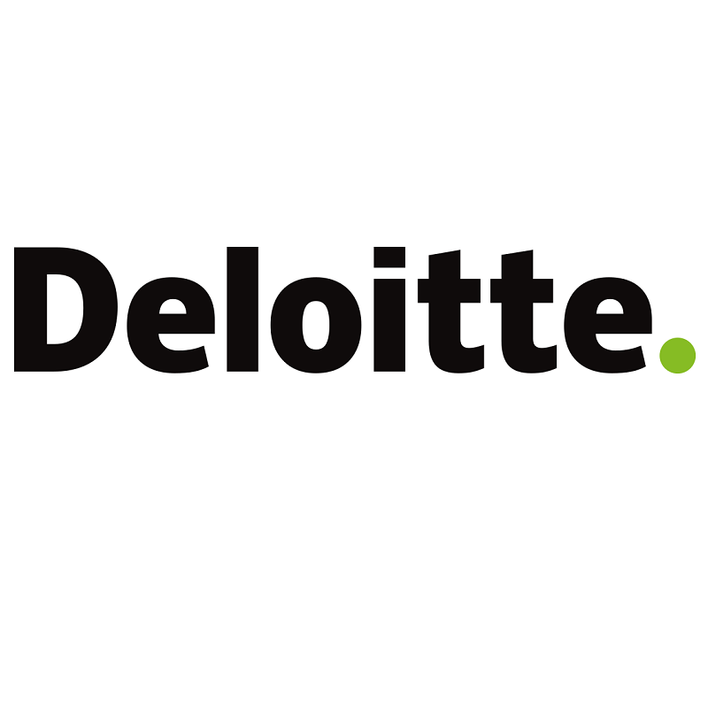Lake Baikal Foundation was audited by Deloitte