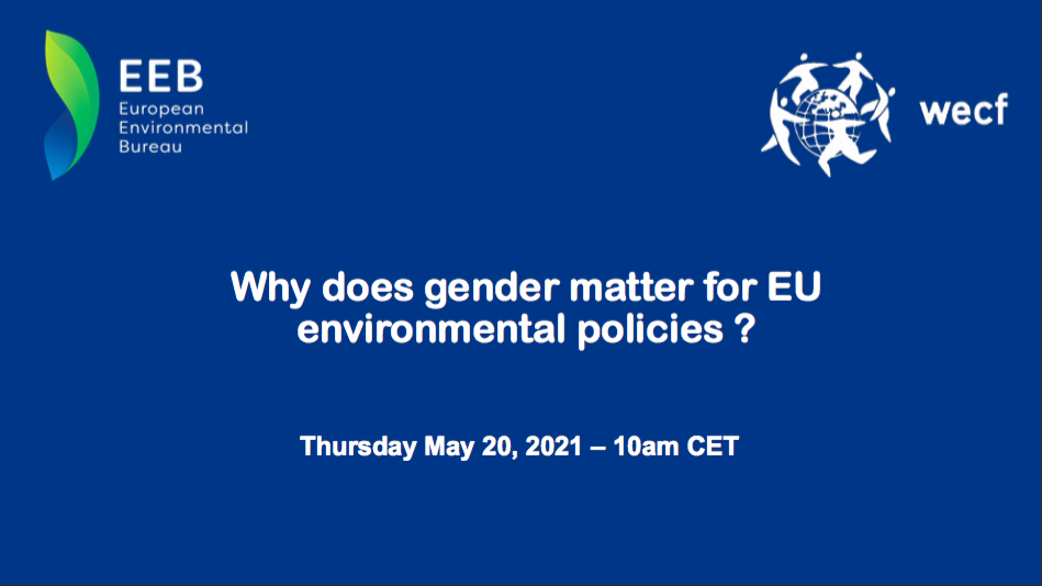 The Foundation contributed to the study on the gender-environment nexus