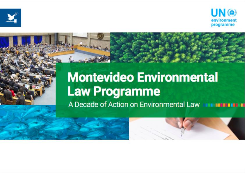 Фонд принял участие в совещании Ассамблеи ООН по окружающей среде