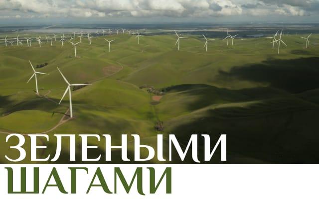 «Зелеными шагами»: грантовый конкурс для бизнеса на Байкале